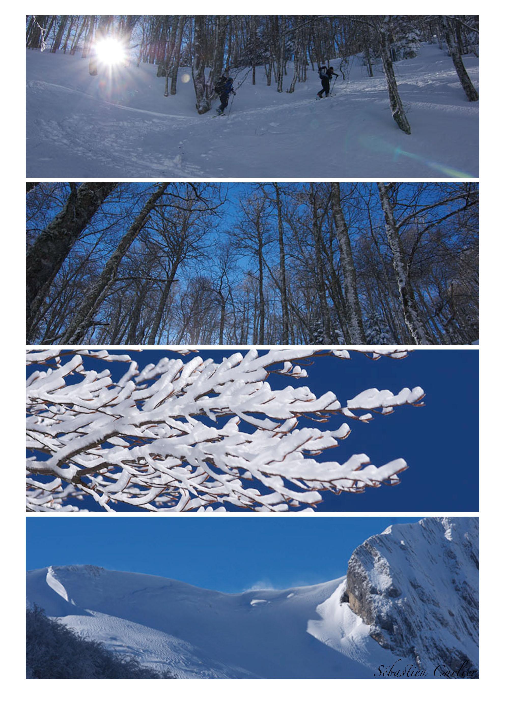 planche contact rando ski 2014_Page_1